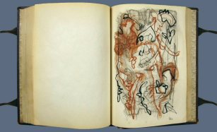 NAPLO ARTIST'S BOOK SERIES - 91