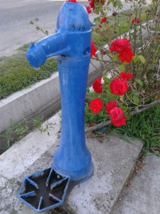 Village Street - Pump and Roses