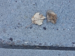 ON THE GROUND 14 - bronzed pair on blue concrete (2021)