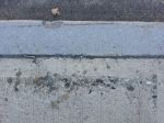 ON THE GROUND 15 - concrete, horizon with leaf (2021)